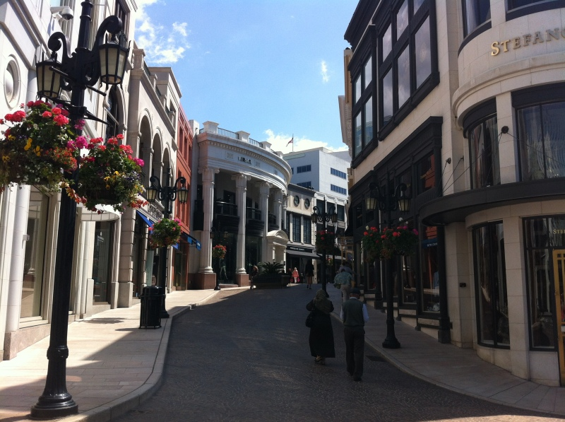 Rodeo Drive, I just wanted to see it, we didn't actually go in any stores